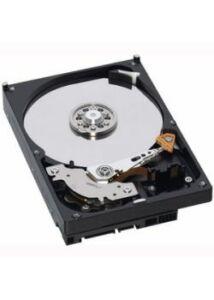 IBM 3TB 7.2K 3.5-INCH NL HDD DS2500